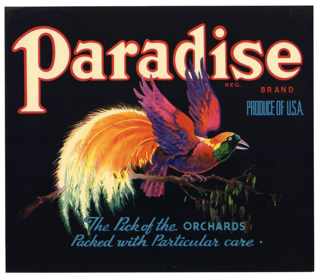 Paradise Brand Vintage Apple Crate Label, bird