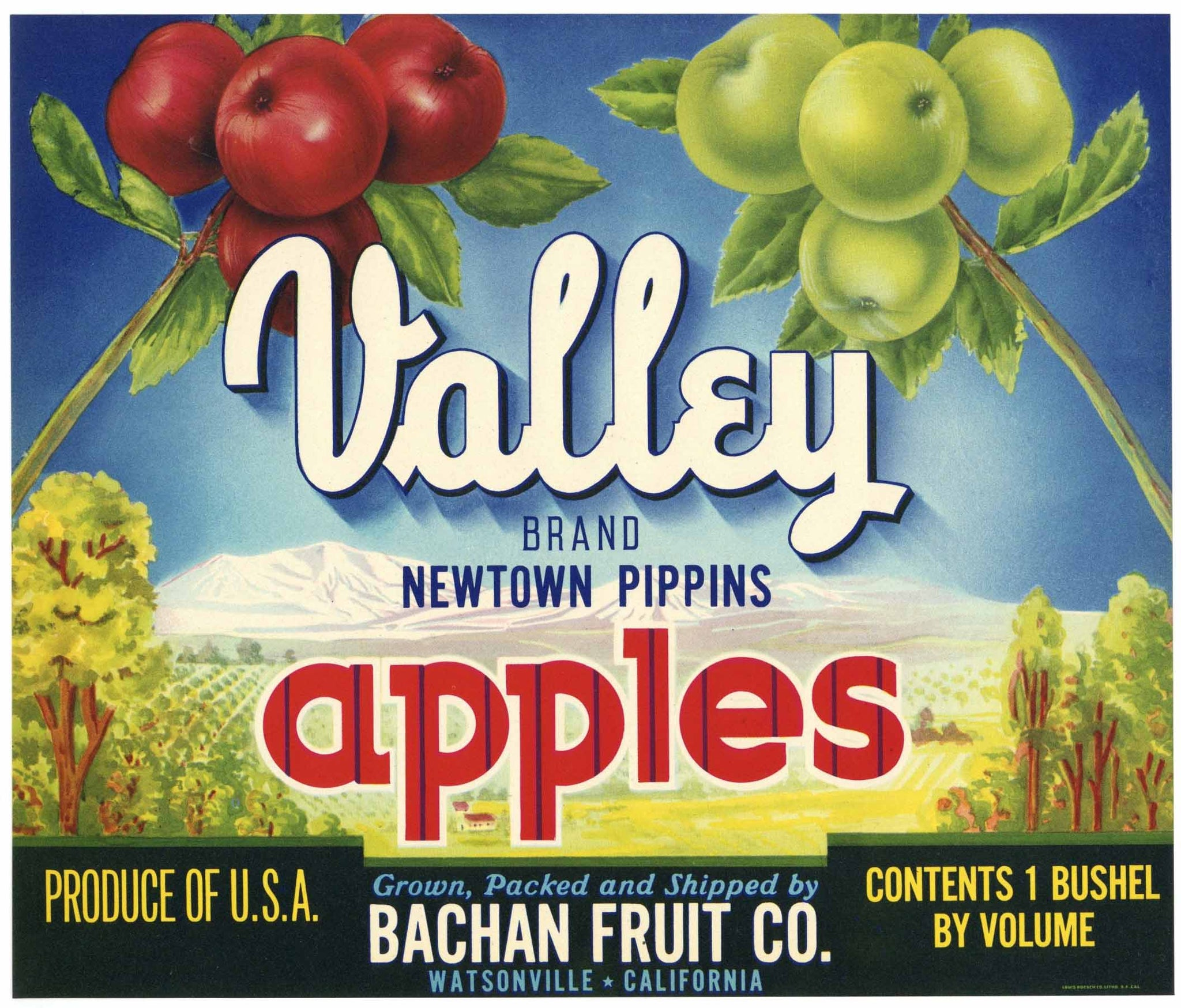 Valley Brand Vintage Watsonville Apple Crate Label