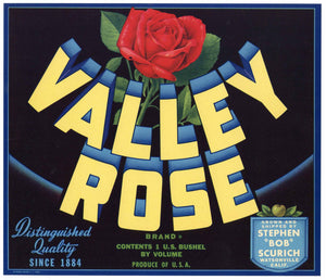 Valley Rose Brand Vintage Watsonville Apple Crate Label