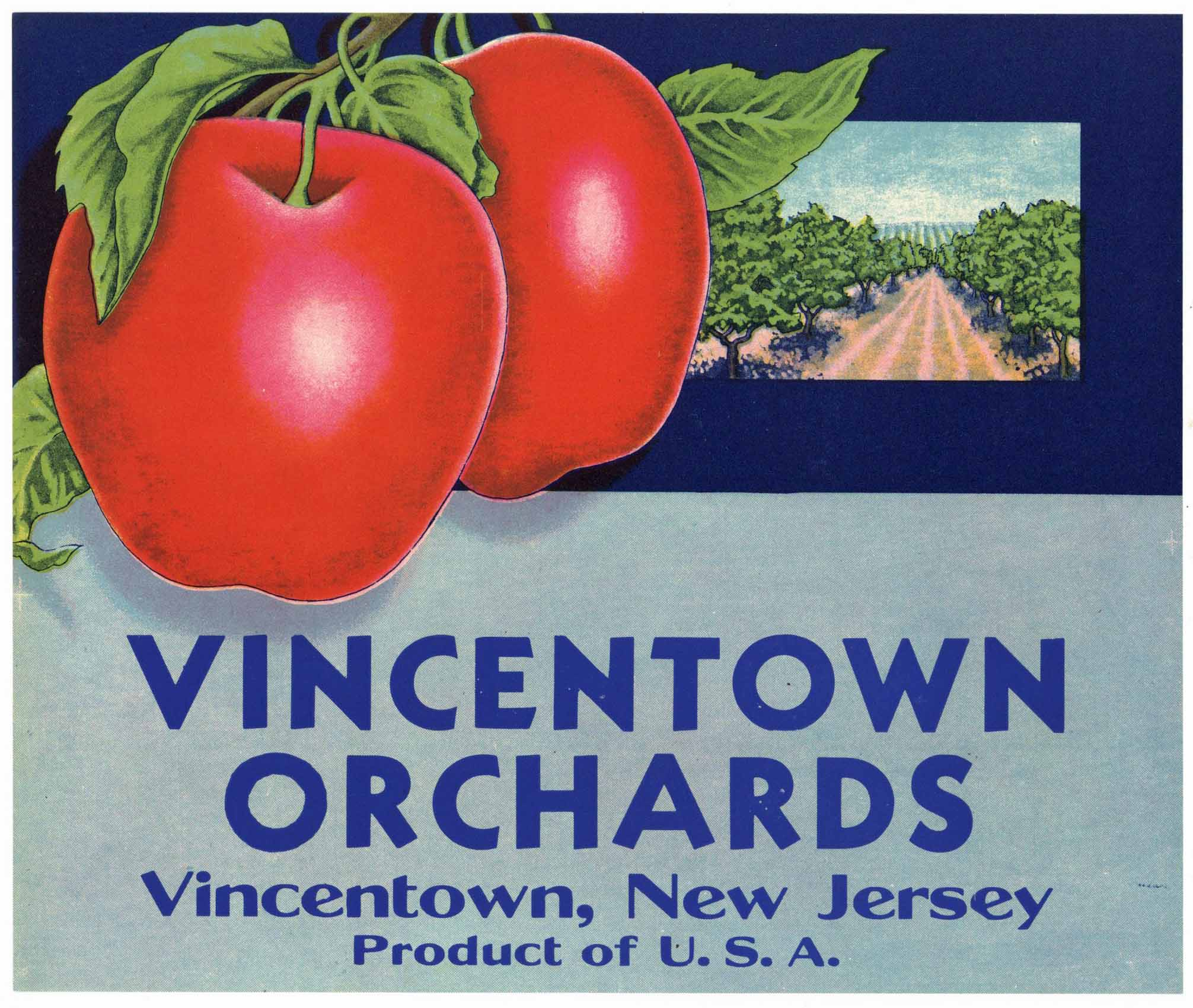 Vincentown Orchards Brand Vintage New Jersey Apple Crate Label
