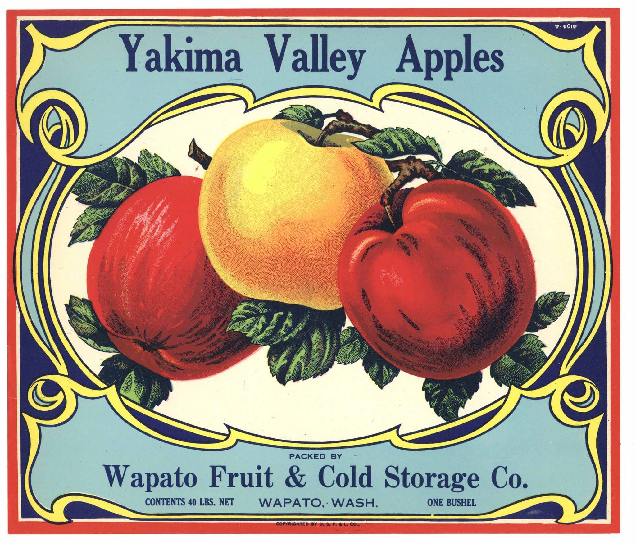 Yakima Valley Apples Brand Vintage Washington Apple Crate Label
