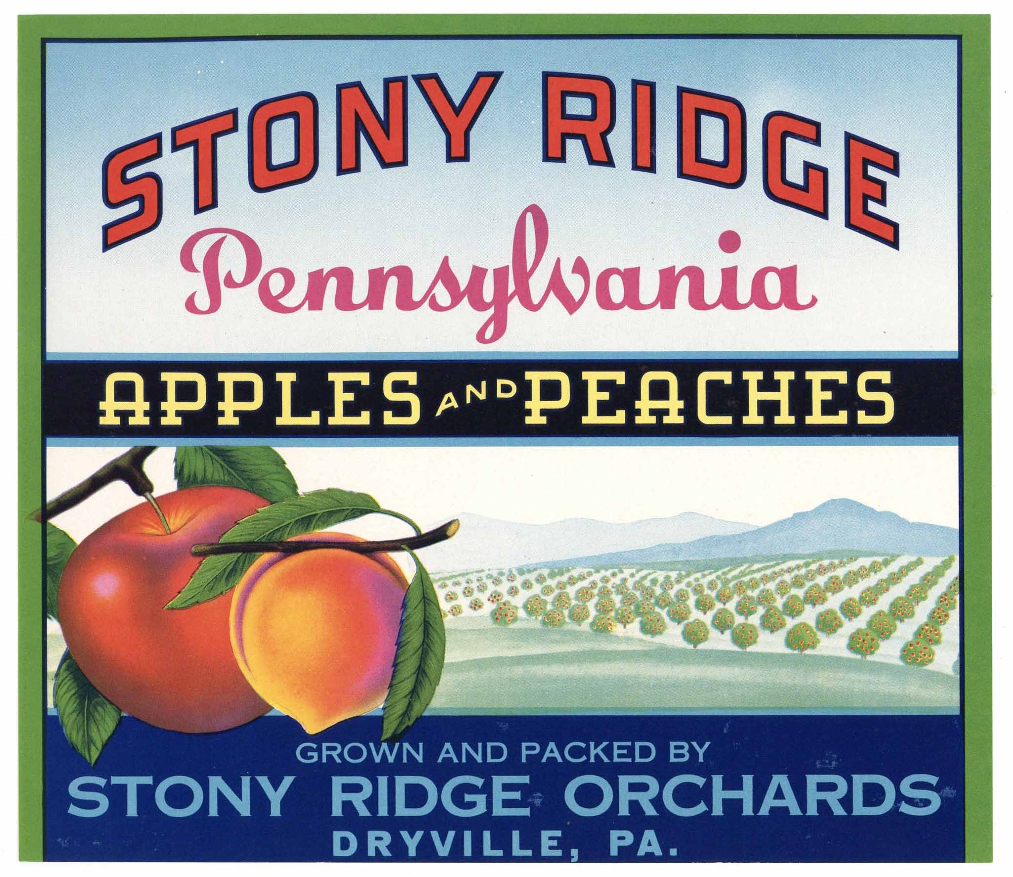 Stony Ridge Brand Vintage Pennsylvania Apple and Peach Crate Label