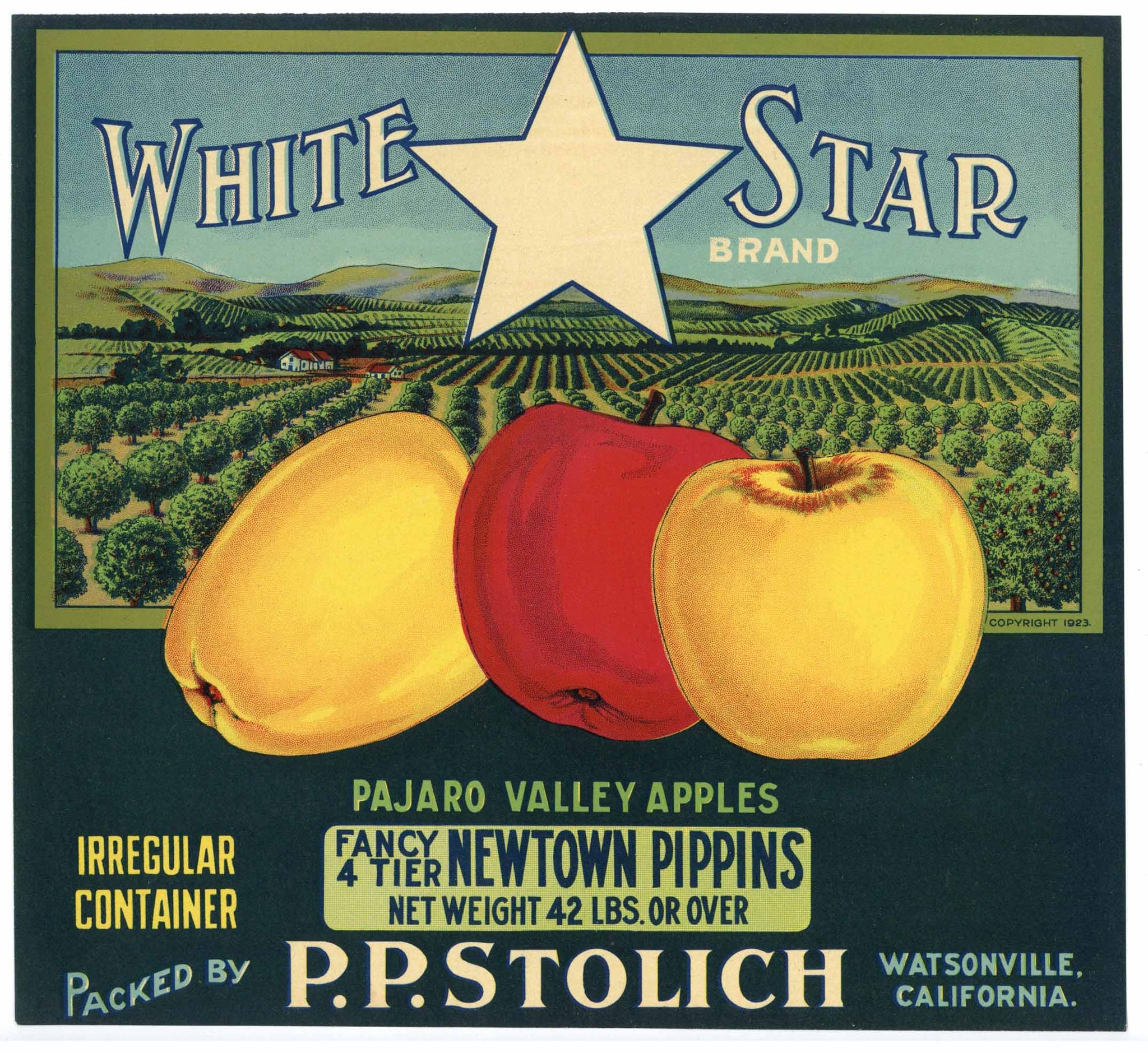 White Star Brand Vintage Watsonville Apple Crate Label