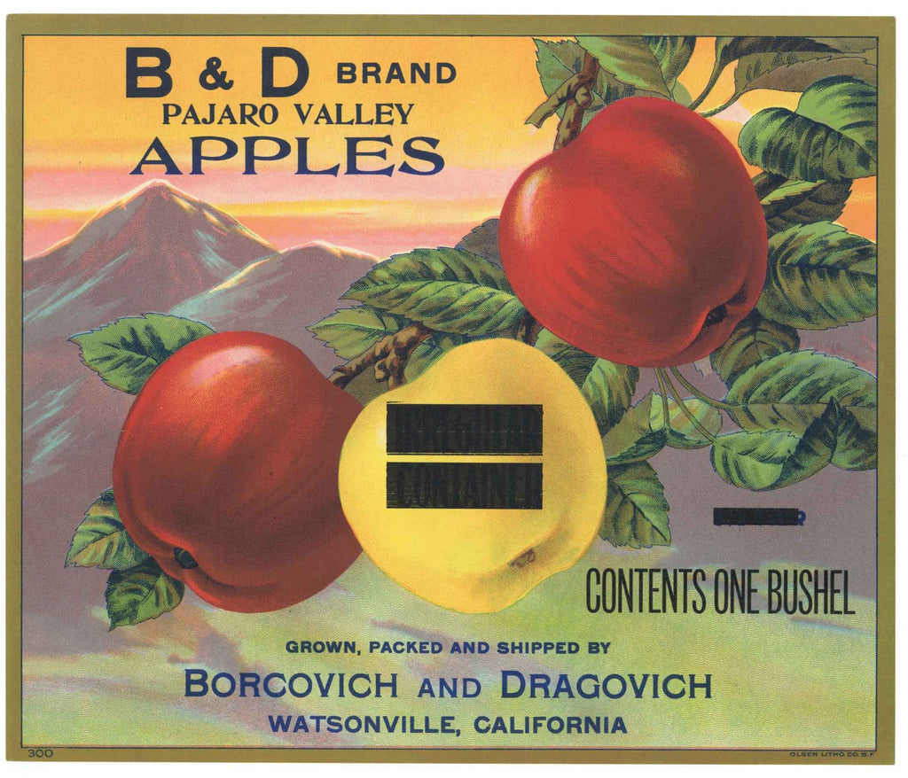 B & D Brand Vintage Watsonville Apple Crate Label