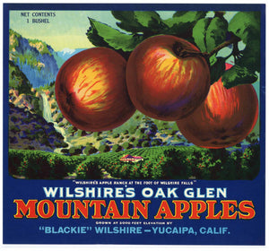 Wilshire's Oak Glen Brand Vintage Apple Crate Label