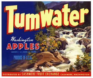 Tumwater Brand Cashmere Washington Apple Crate Label