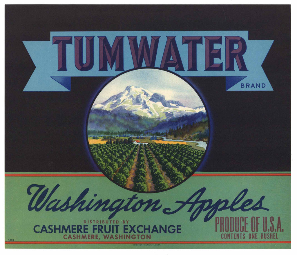 Tumwater Brand Cashmere Washington Apple Crate Label, stock