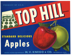 Top Hill Brand Watsonville Apple Crate Label