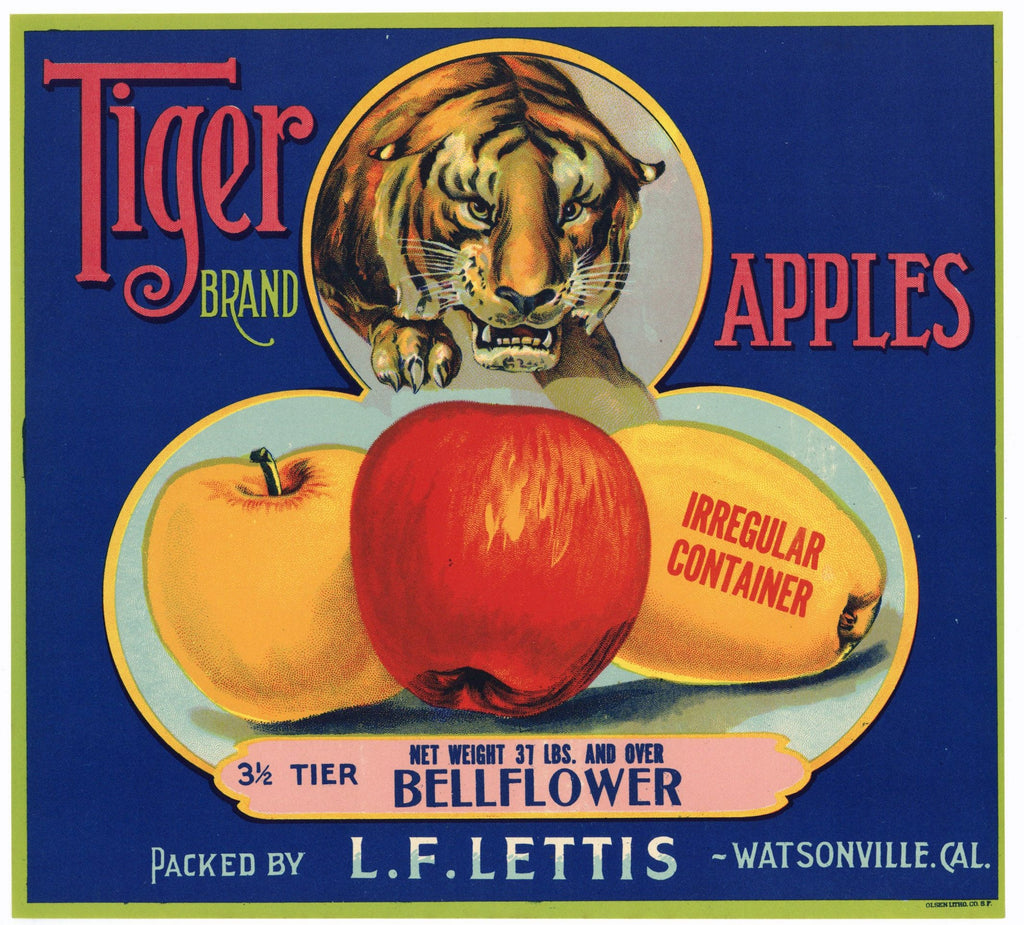 Tiger Brand Vintage Watsonville Apple Crate Label, Bellflower