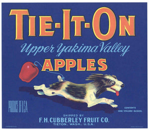 Tie-It-On Brand Vintage Tieton, Washington Apple Crate Label, blue