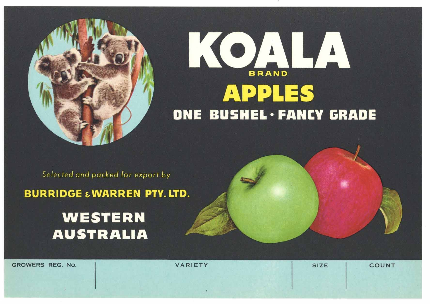 Koala Brand Vintage Australian Apple Crate Label