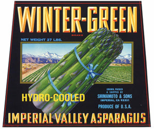 Winter Green Brand Vintage Imperial Valley Asparagus Crate Label