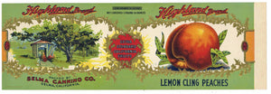 Highland Brand Vintage Selma Peach Can Label