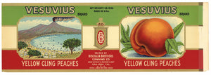 Vesuvius Brand Vintage San Jose Peach Can Label