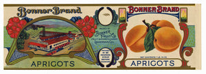 Bonner Brand Vintage Apricot Can Label