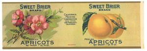 Sweet Brier Brand Vintage Apricot Can Label