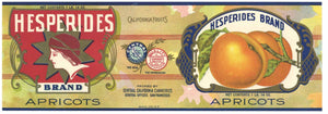 Hesperides Brand Vintage Apricot Can Label
