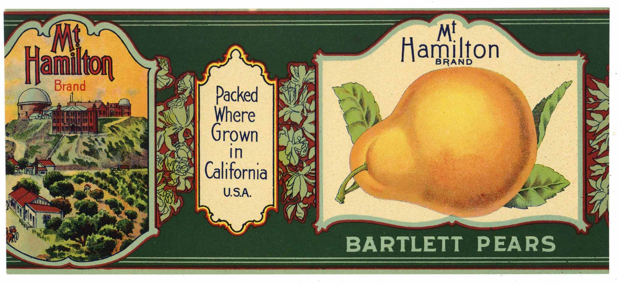 Mt. Hamilton Brand Vintage Pear Can Label, trimmed