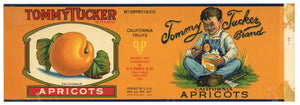 Tommy Tucker Brand Vintage Apricot Can Label