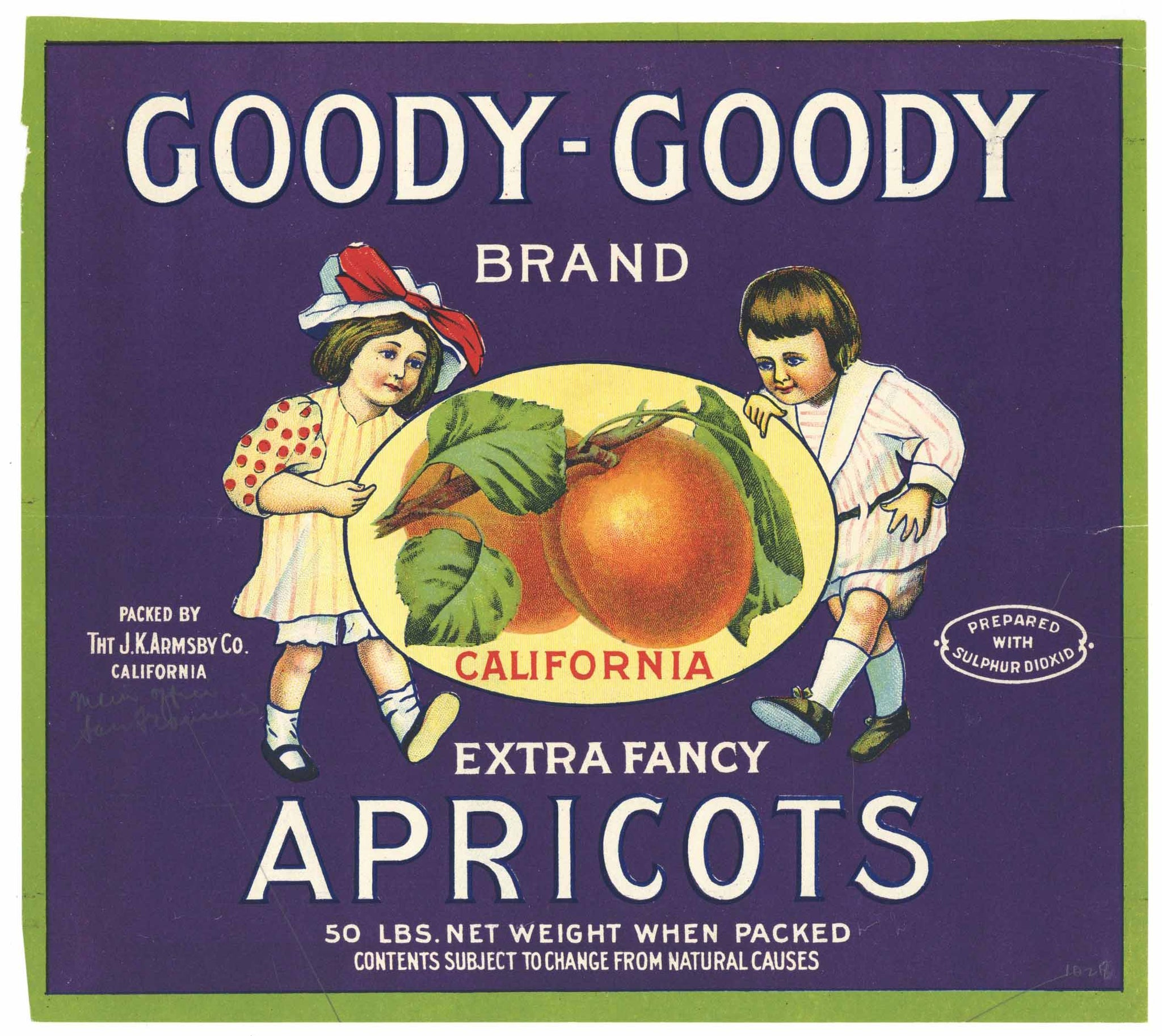 Goody Goody Brand Vintage Dried Apricot Crate Label