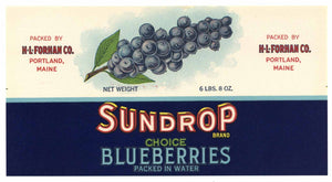 Sundrop Brand Vintage Portland Maine Blueberry Can Label