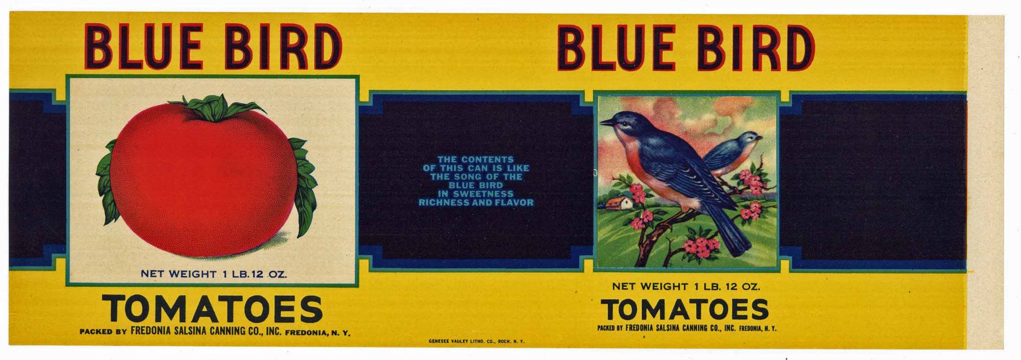 Blue Bird Brand Vintage Fredonia New York Tomato Can Label