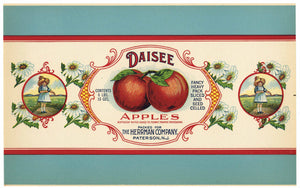 Daisee Brand Vintage Paterson, New Jersey Apple Can Label,