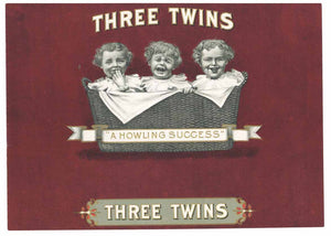 Three Twins Inner Cigar Box Label