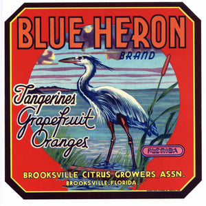Blue Heron Brand Vintage Brooksville Florida Citrus Crate Label