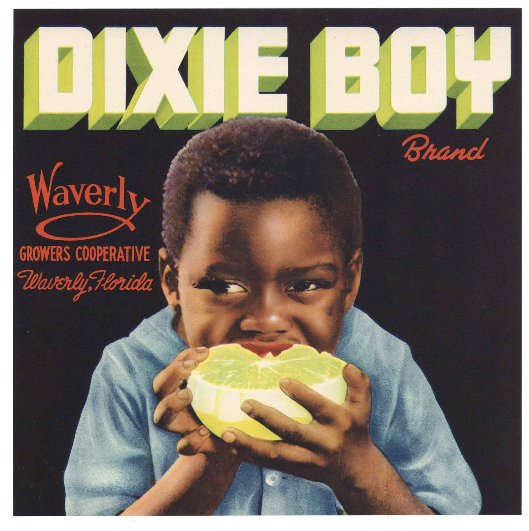 Dixie Boy Brand Vintage Waverly Florida Citrus Crate Label