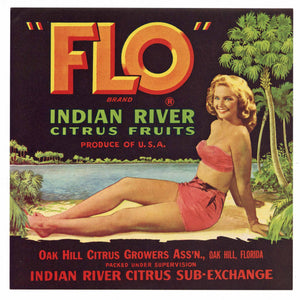 Flo Brand Vintage Florida Citrus Crate Label, g