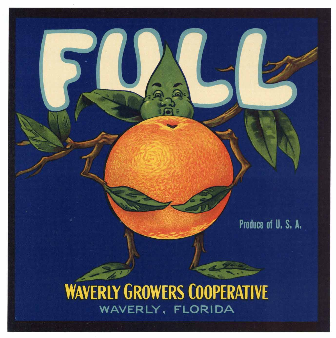 Full Brand Vintage Waverly Florida Citrus Crate Label
