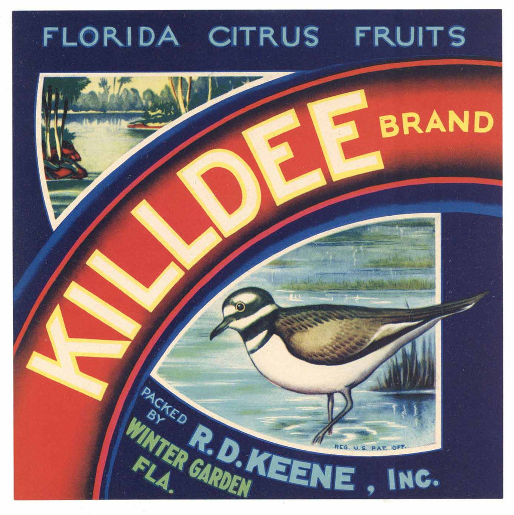 Killdee Brand Vintage Winter Garden Florida Citrus Crate Label