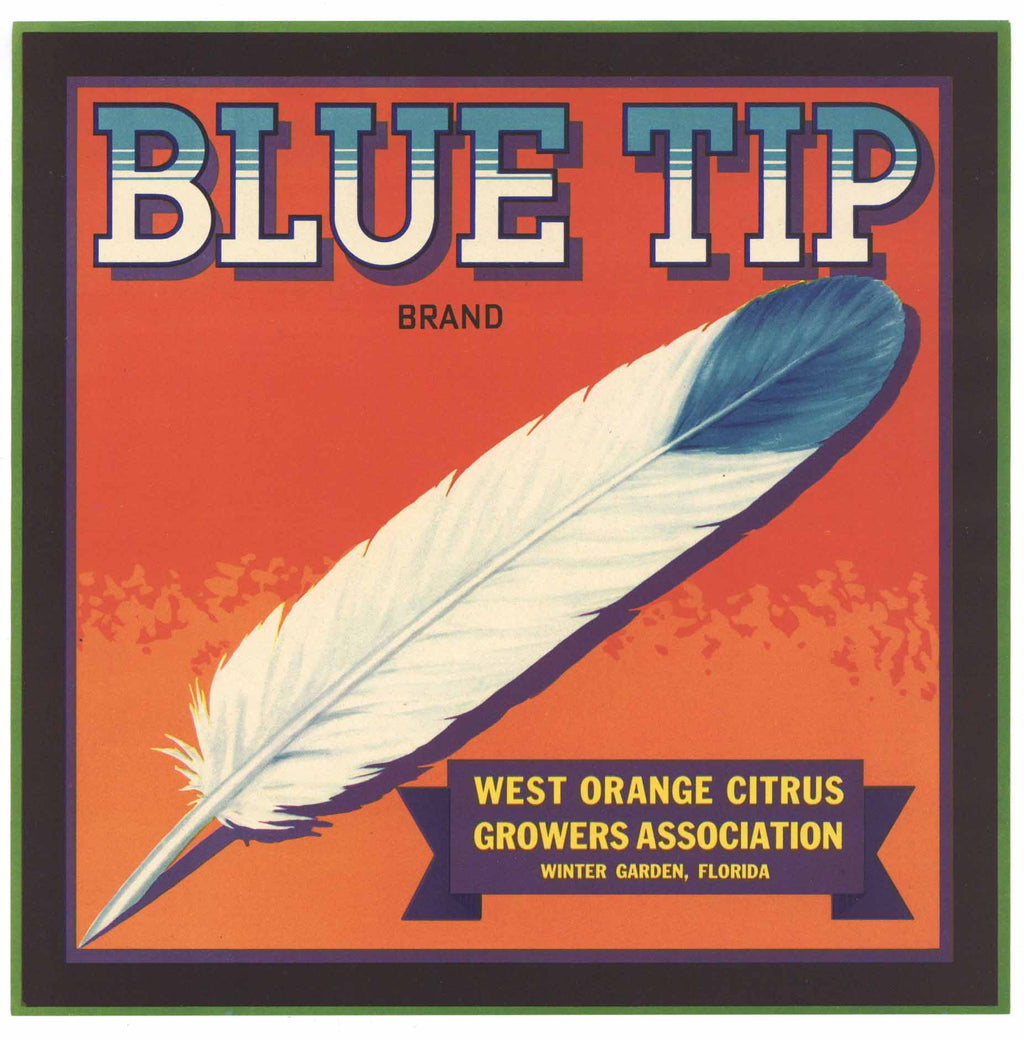 Blue Tip Brand Vintage Winter Garden Florida Citrus Crate Label, box