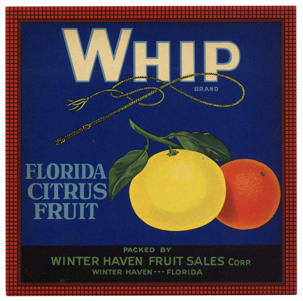 Whip Brand Vintage Winter Haven Florida Citrus Crate Label 7x7