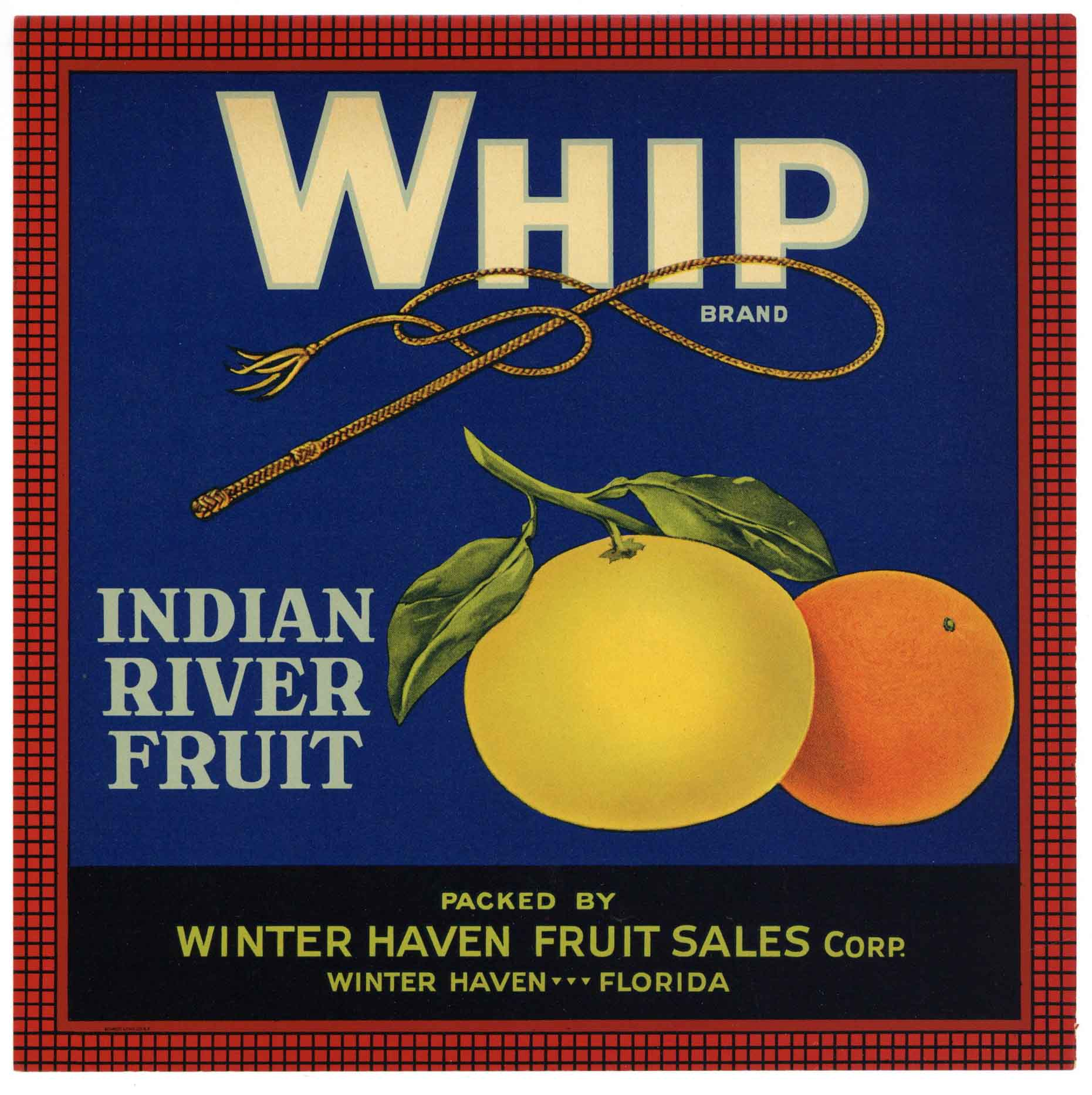 Whip Brand Vintage Winter Haven Florida Citrus Crate Label 9x9