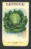 Lettuce Antique Stock Seed Packet