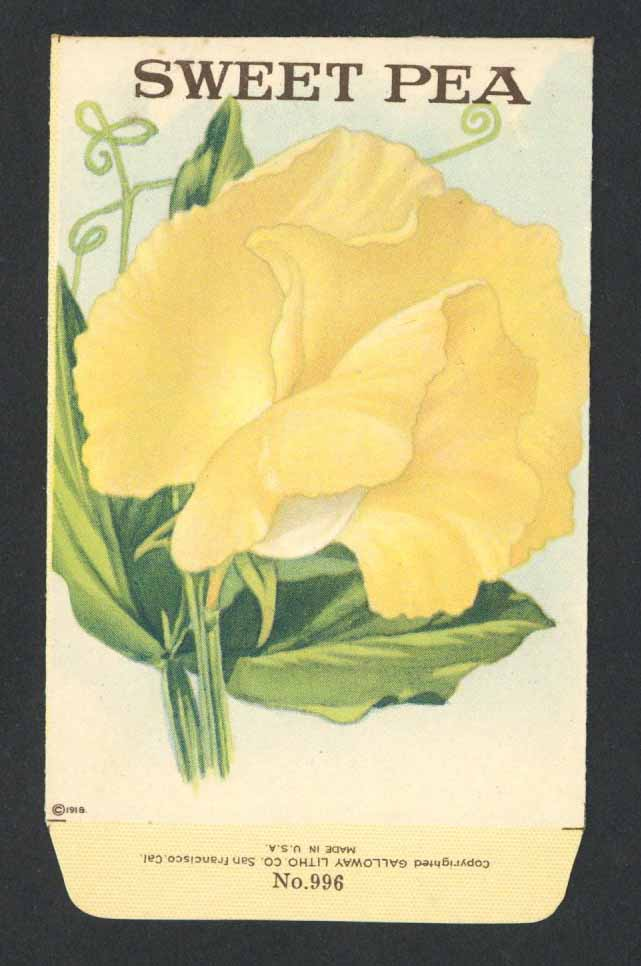 Sweet Pea Antique Stock Seed Packet