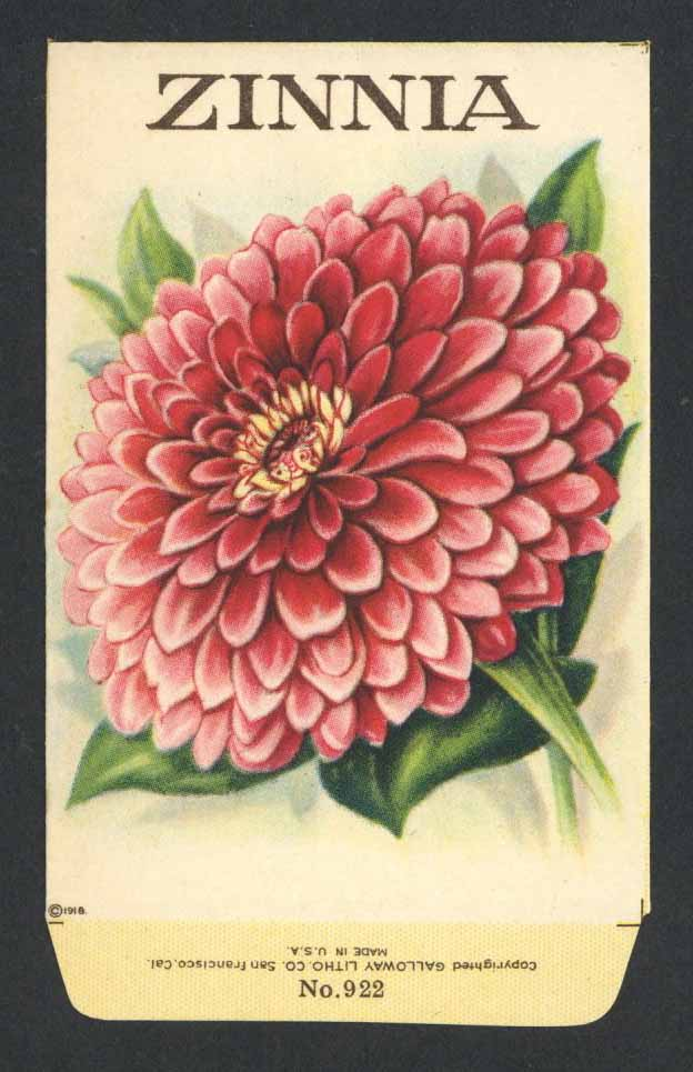 Zinnia Antique Stock Seed Packet