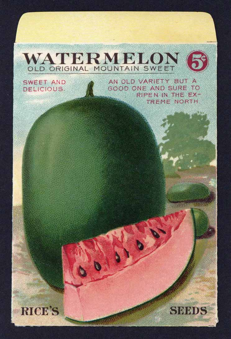Watermelon Antique Rice's Seed Packet, Old Original Mountain Sweet
