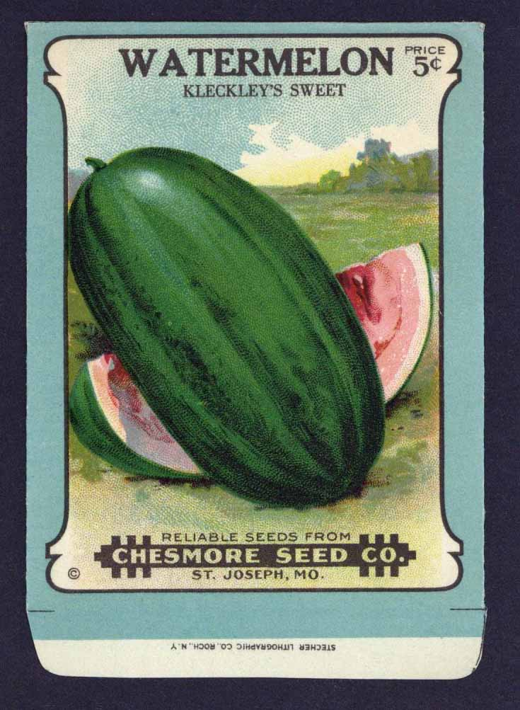 Watermelon Antique Chesmore Seed  Co. Packet