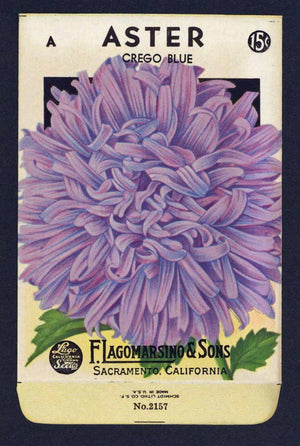 Aster Vintage Lagomarsino Seed Packet, Crego Blue