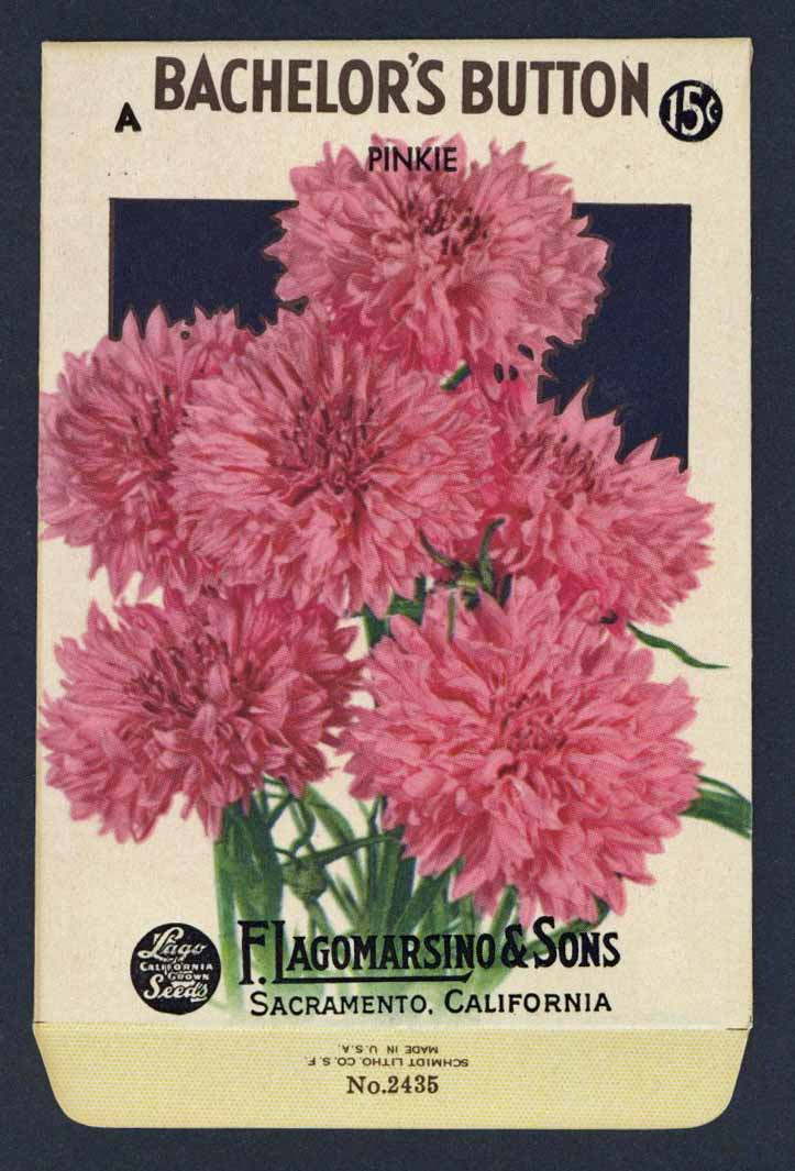 Bachelor's Button Vintage Lagomarsino Seed Packet
