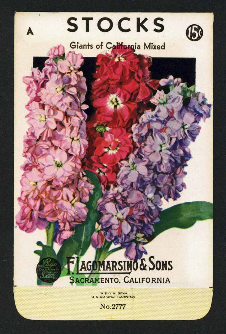 Stocks Vintage Lagomarsino Seed Packet