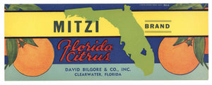 Mitzi Brand Vintage Clearwater Florida Citrus Crate Label