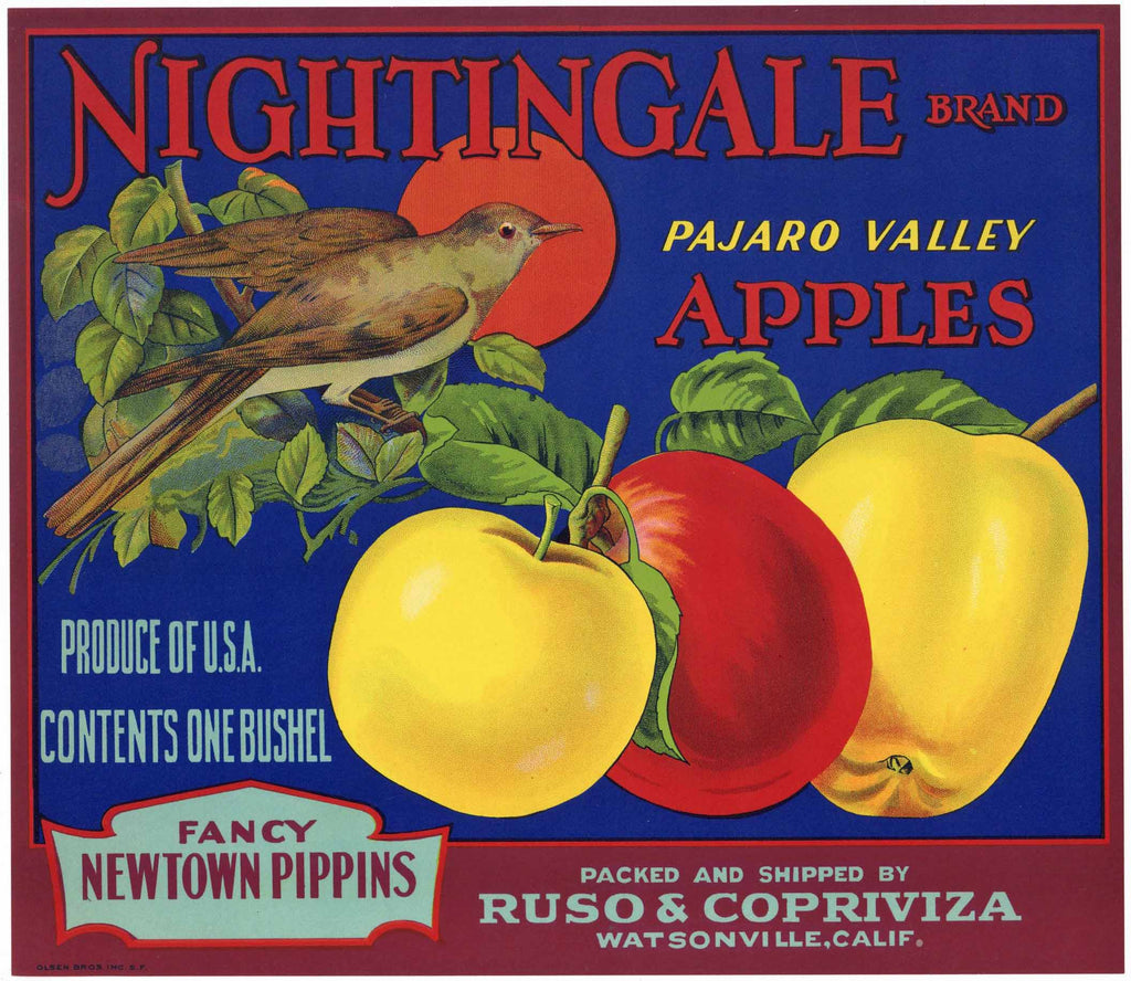 Nightingale Brand Vintage Watsonville Apple Crate Label, Newtown Pippins