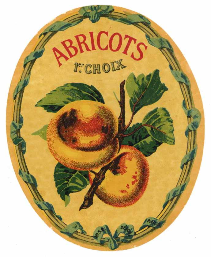 Abricots Brand Vintage French Liquor Bottle Label