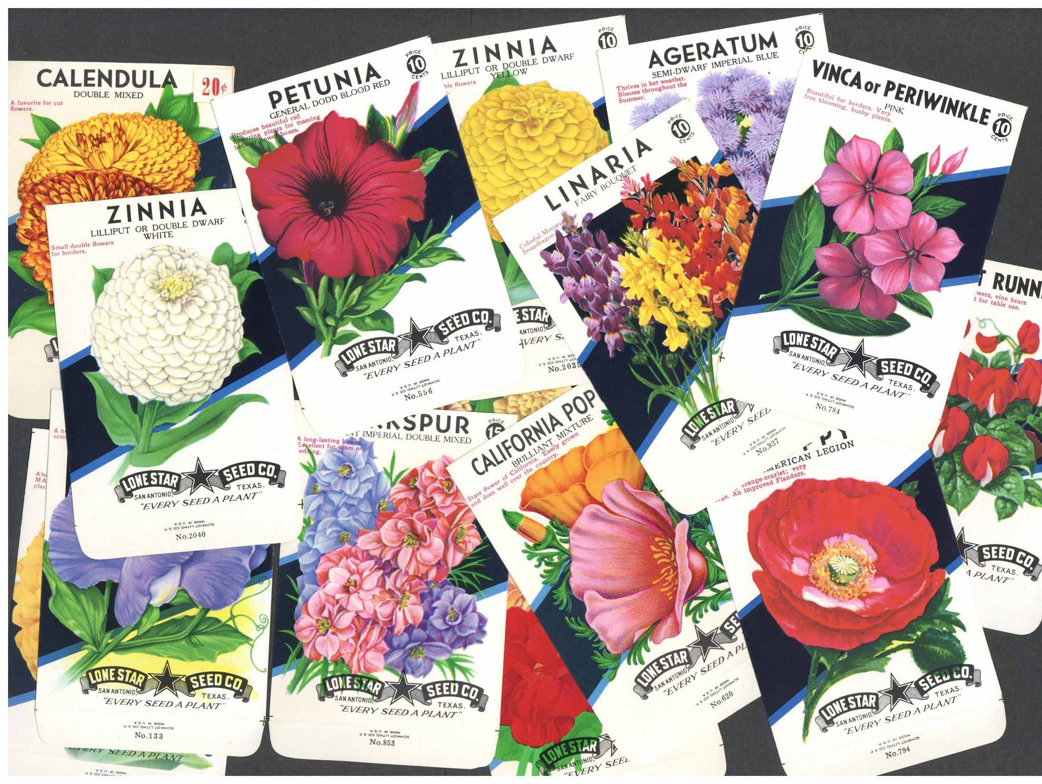 A Collection of 15 Vintage Flower Seed Packets