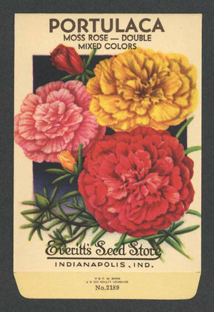 Portulaca Vintage Everitt's Seed Packet, Moss Rose