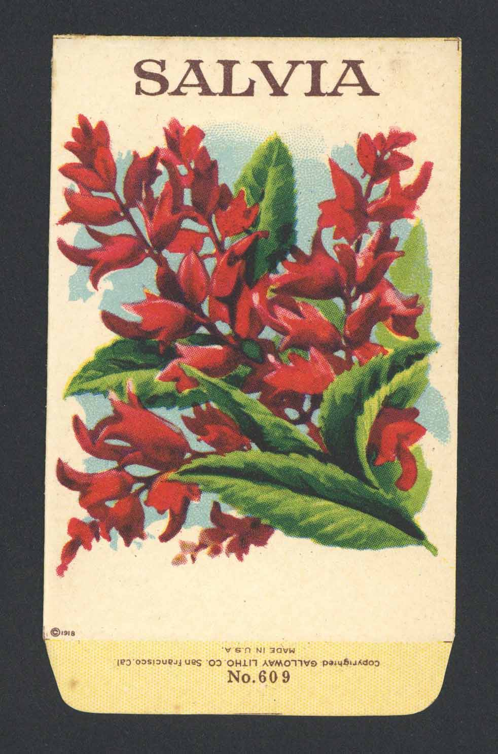 Salvia Antique Stock Seed Packet